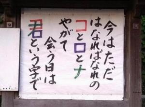 Kogusoku20210730_040633_394076